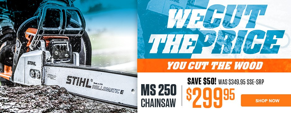 Save Now on the MS 250 Chain saw